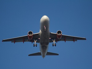 1377008_in_flight